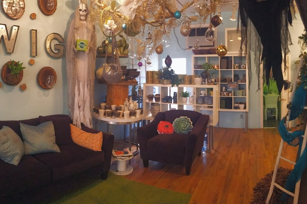 Photo of Twig Terrariums, NYC / Tri-State