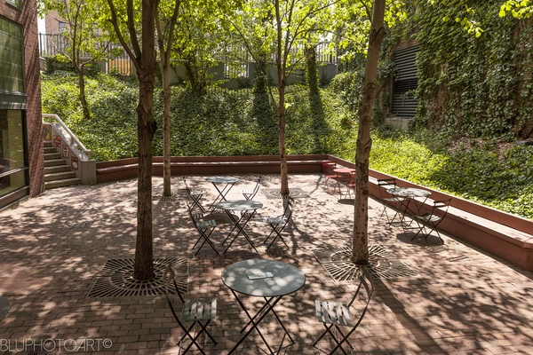 Photo of NYC / Tri-State event space venue The Schomburg Center's Courtyard