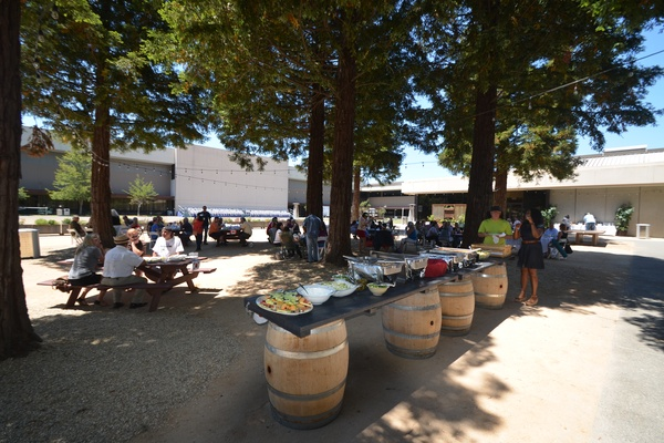Photo of DC / MD / VA event space venue SOMO Village Events Outdoors's Outdoor Redwood Grove
