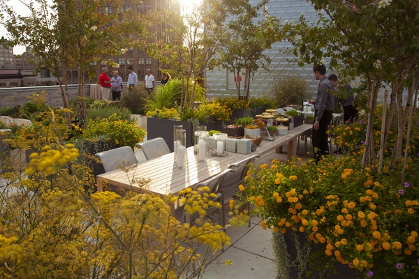 Photo of NYC / Tri-State event space venue Michael Kors Building at God's Love We Deliver's Rooftop Herb Garden