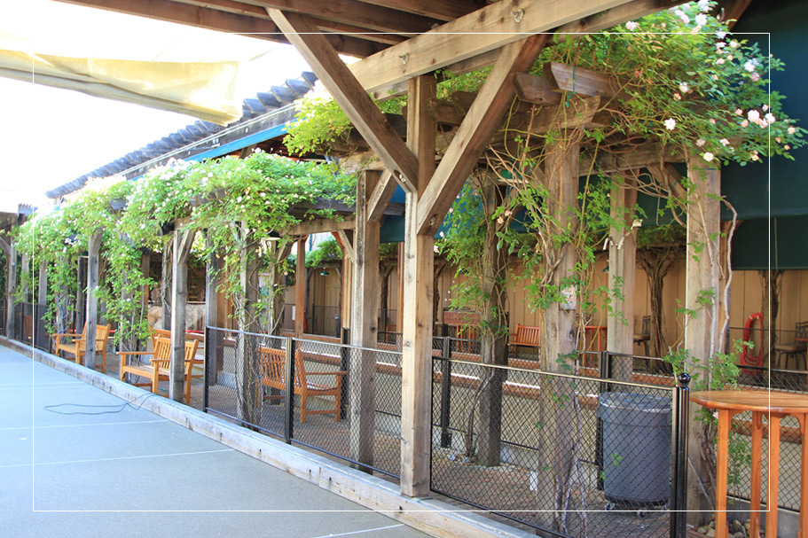 Photo #3 Patio at Campo di Bocce Los Gatos