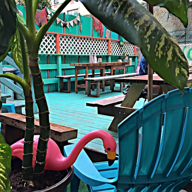 Photo #5 The Shack Patio + Deck at LoLo's Seafood Shack
