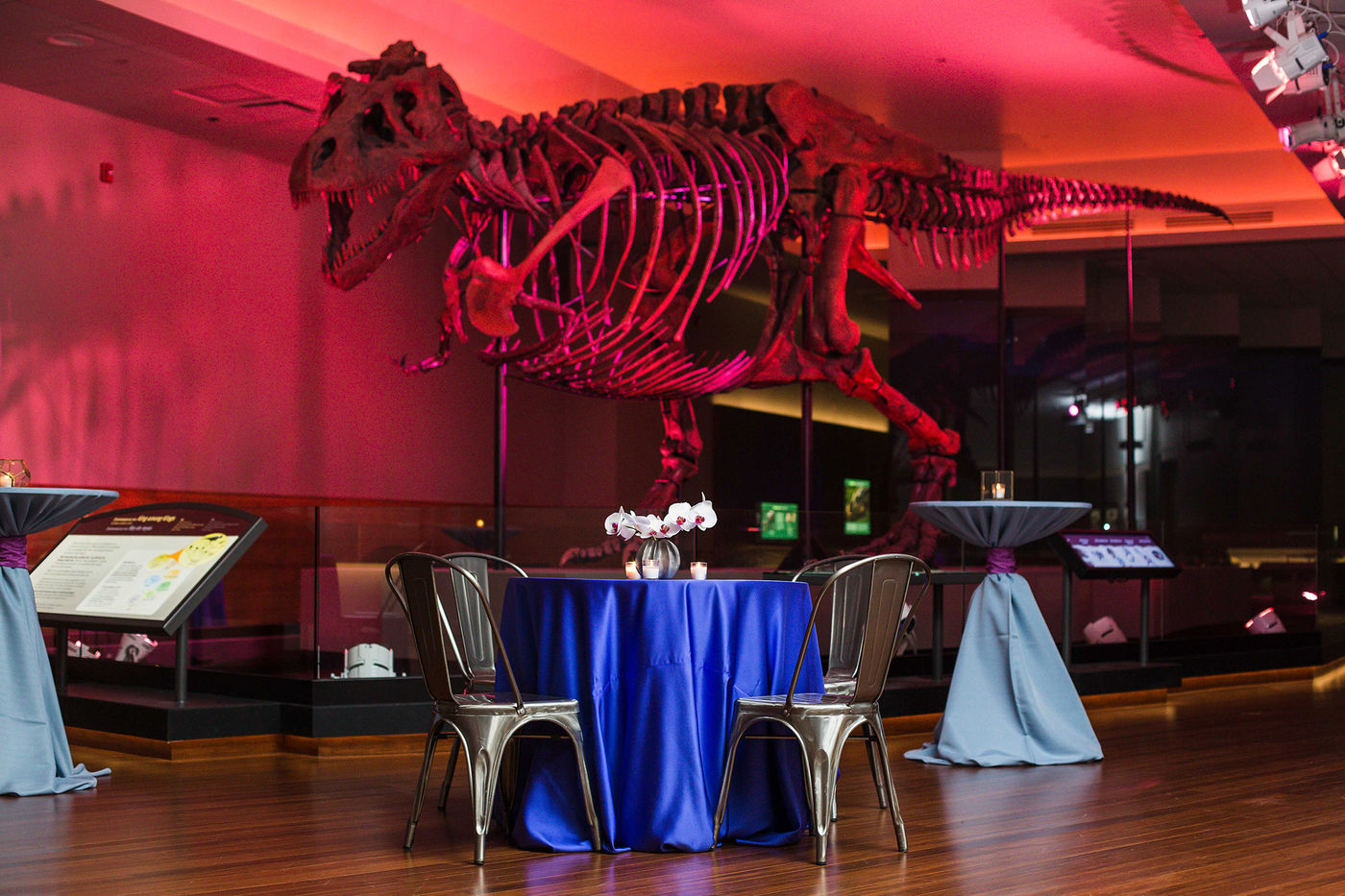 The Field Museum event space in Chicago, Chicagoland Area