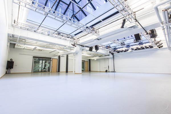 Full Venue event space at Gibney Dance in New York City, NYC, NY/NJ Area