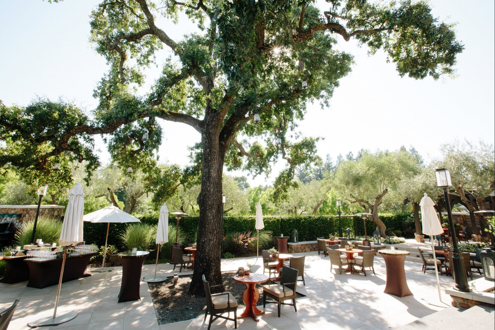 Photo #6 Heritage Oak Terrace at Hotel Yountville
