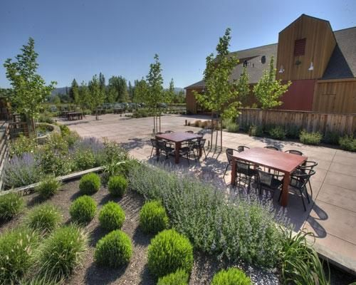 Pecan Patio event space at Cakebread Cellars in San Francisco, SF Bay Area, San Fran