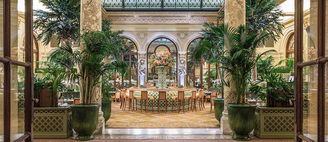 The Palm Court at The Plaza Hotel event space in New York City, NYC, NY/NJ Area