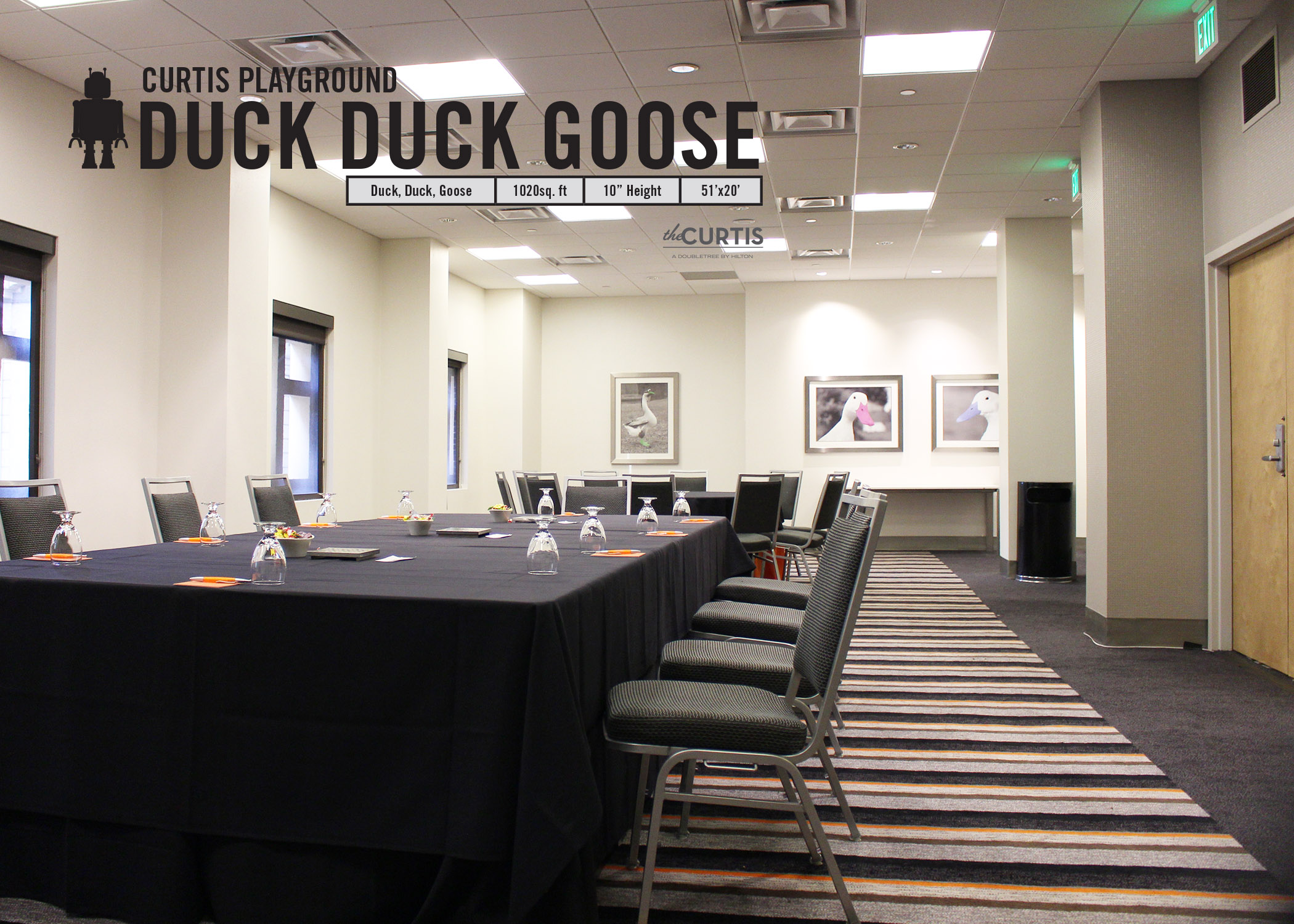 Photo #3 Duck Duck Goose at theCURTIS -a Doubletree by Hilton